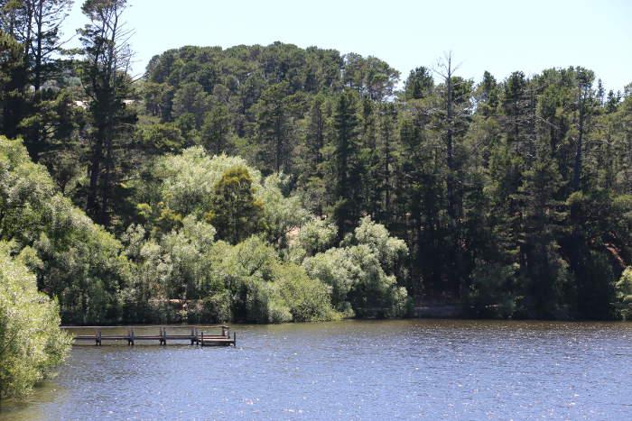 Lake Daylesford Peace Walk views